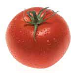 Tomato_picture